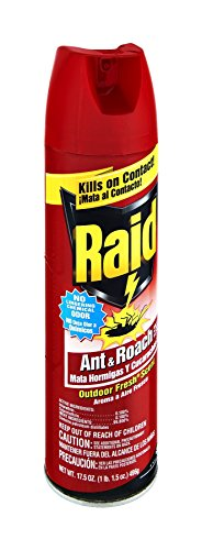 (Raid Ant & Roach Killer Outdoor Fresh Scent, 17.5 OZ (Pack - 12))
