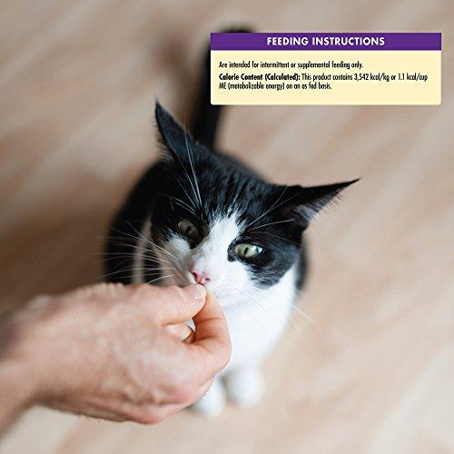 Wellness Kittles Natural Grain Free Cat Treats, Salmon & Cranberries, 2-Ounce Bag by Wellness Natural Pet Food (Image #8)