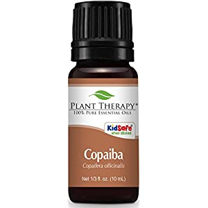 Plant Therapy Copaiba Oleoresin 10 mL (1/3 oz) 100% Pure, Undiluted, Therapeutic Grade