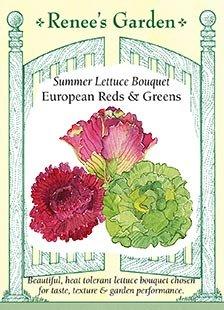 Lettuce - Summer Bouquet Seeds