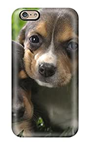 Hot Beagle Puppies First Grade Hard shell Phone For Iphone 6 4.7 Inch Case Cover