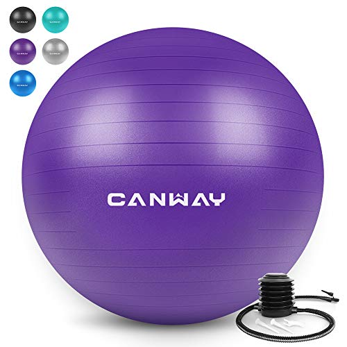 Canway Exercise Ball - Extra Thick & Slip Resistant Workout Ball, Professional Grade 2200lbs Anti-Burst Stability Ball, 65CM Yoga Ball with Quick Foot Pump (Purple)