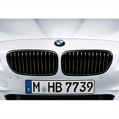 For BMW Genuine Grille Front Right 51768063028