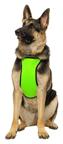 kt-fit-cooling-warming-sport-harness-for-active-dog-medium-neon-green
