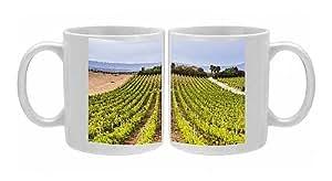 Photo Mug of Vineyard at a winery near Noto, South East Sicily, Italy, Europe by Robert Harding