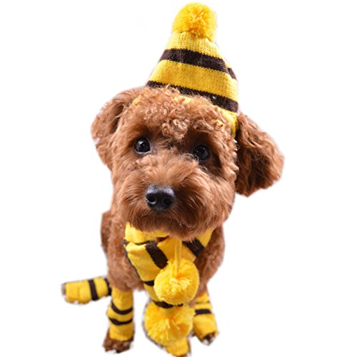 Alfie Pet by Petoga Couture - Jerry Winter Scarf, Hat and Leg Warmers Set for Dogs and Cats - Pattern: Yellow, Size: Medium