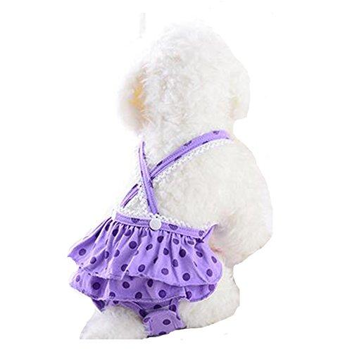 Pet Diaper Panty - 9