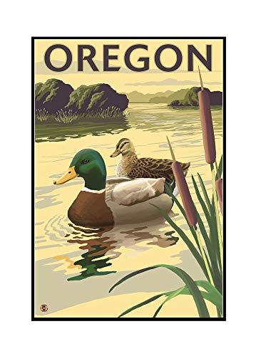 Oregon Ducks Framed - Mallard Ducks - Oregon (24x36 Framed Gallery Wrapped Stretched Canvas)