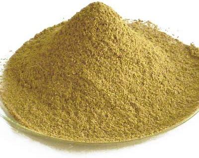 アシタバ パウダー 1kg 明日葉 粉末 100% 青汁 サプリメント お茶