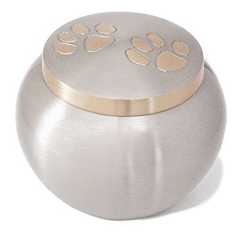 odyssey-pewter-with-brass-paws-small