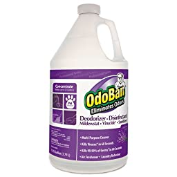 CCC911162G4 - Professional Series Deodorizer Disinfectant, 1gal Bottle, Lavender Scent