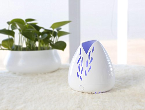 ZAQ Lucent Portable Aromatherapy Essential Oil Fan Diffuser - Battery & USB Powered for Home Office Bedroom Room (White)