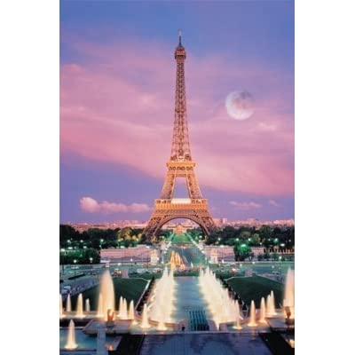 Tomax 1000 Piece Eiffel Tower Glow-in-the-dark Jigsaw Puzzle: Varios: Toys & Games