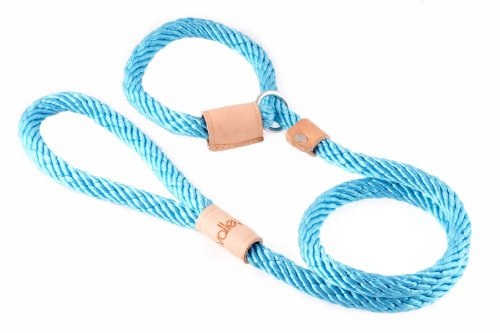 Aqua Leash - Alvalley Turquoise Sport Slip Lead with Leather Stop for Dogs Made of Strong Multifilament Polypropylene Rope (13mm X 123cm or 1/2in X 4ft)
