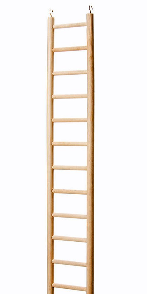 North American Pet BBO22795 Bob Parrot Ladder, 48-Inch by North American Pet
