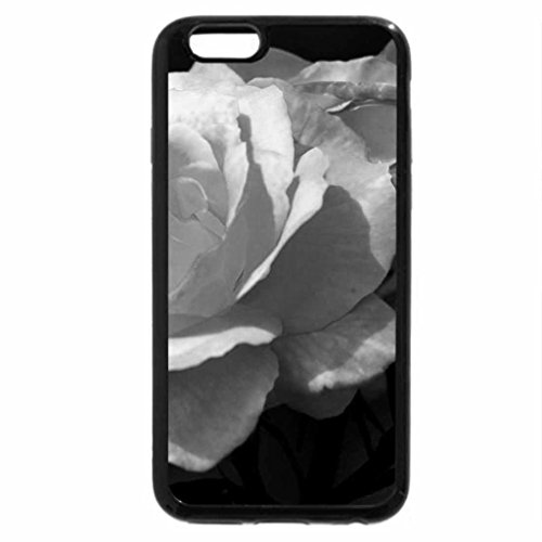 iPhone 6S Case, iPhone 6 Case (Black & White) - Roses Colors