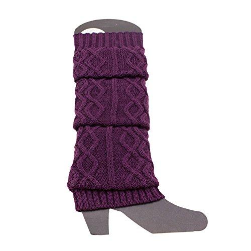 Adorox Wavy Braided Cable Knit Stitch Warm Winter Boot Fashion Leg Warmers (Purple)