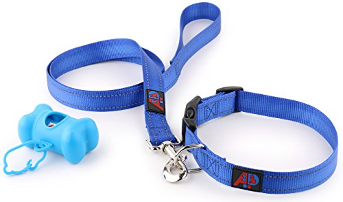reflective-nylon-dog-collar-leashes-for-medium-dogs-poop-bag-holder-be-petsmart