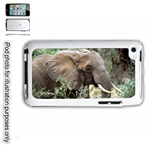 African Elephant Photo iPOD 4 Touch Hard Case Cover Shell White 4th Generation White