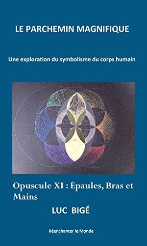 Le Parchemin Magnifique: Opuscule 11 : épaules, bras et mains (French Edition)