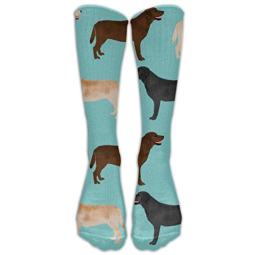 - Custom Funny Stockings Cute Labradors Black Lab Pet Dogs Compression Nurses Shin Splints Flight Skiing Maternity Pregnancy Boost Stamina Recovery Girls Boys Knee Long Socks Travel Breathable