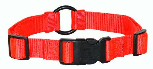 Hamilton 1-Inch Adjustable Saferite Dog Collar, Adjusts from 18 to 26-Inch, Safety Orange