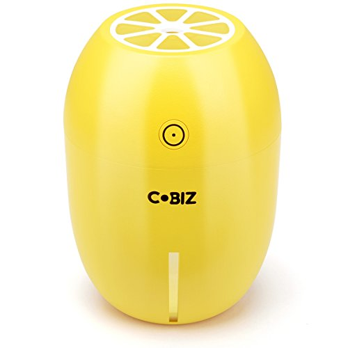 Cool-Mist USB Humidifier, Cobiz Air Purifier for Office, Car, Bedroom Use