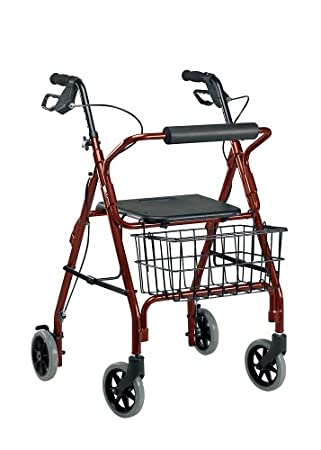 Amazon.com: Drive Medical 10208rd-1 go-lite – Andador, color ...
