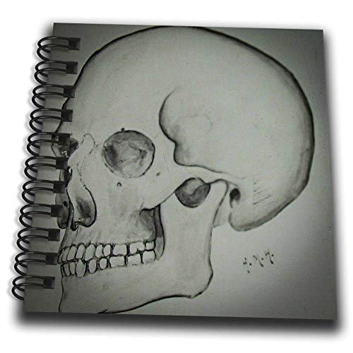 3dRose Scenes from The Past - Magic Lantern - 1920s Medical School Teaching Slide of The Human Skull Vintage - Mini Notepad 4 x 4 inch (db_301630_3)]()