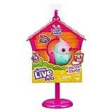 Little Live Pets Lil' Bird & Bird House - with