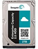 Seagate Enterprise 2 TB 2.5'' Internal Hard Drive ST2000NX0263