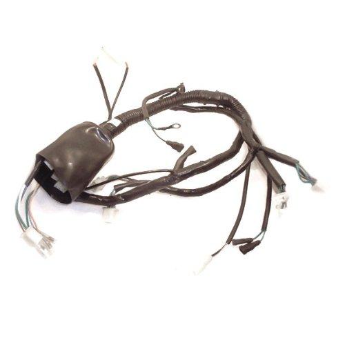 Wiring Loom for LF125-30 (WRLM018):
