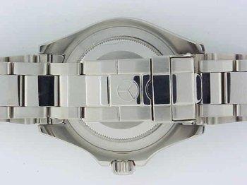 Amazon.com: DIMA- Mens Swiss Watch Platinum Series Artic ...