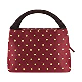 Philorn Reusable Insulated Lunch Bag Sturdy Oxford Box Tote with Zipper for Men, Women, Adult, Picnic and Work, Wine Red