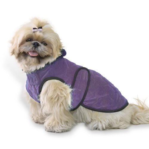 Scooter's Friends Quilted Velvet Dog Coat, Size 10, Amethyst