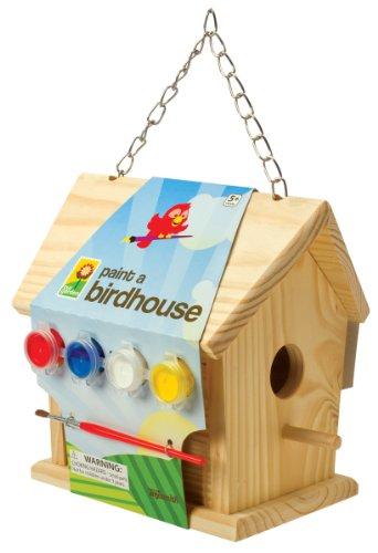 Toysmith 2951 Paint a Birdhouse Kit