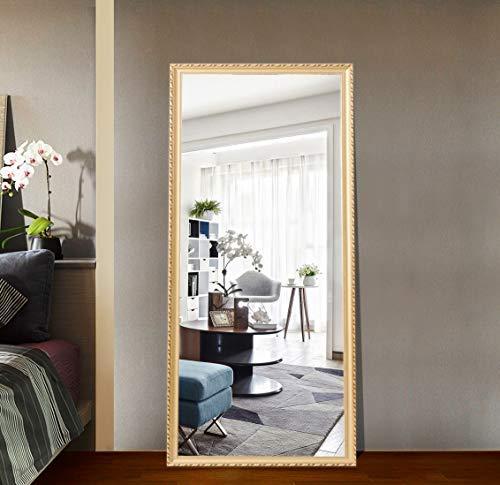 Hans & Alice 65x24 Rectangular Bathroom Full Length Floor Mirror Standing or Hanging(Champagne)