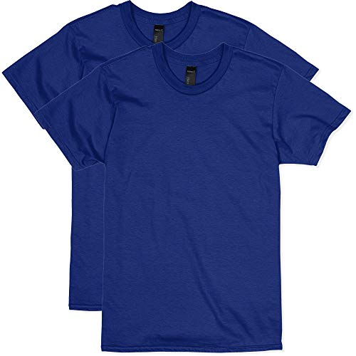 Hanes Men's Nano Premium Cotton T-Shirt (Pack of 2), Deep Royal, X-Large