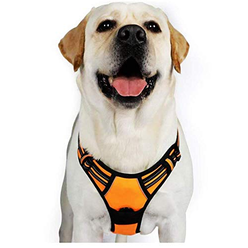 """rabbitgoo Dog Harness, No-Pull Pet Harness with 2 Leash Clips, Adjustable Soft Padded Dog Vest, Reflective Big Pet Oxford Vest with Easy Control Handle for Large Breeds, Orange, (XL, Chest 20.3-39.6"""")"""