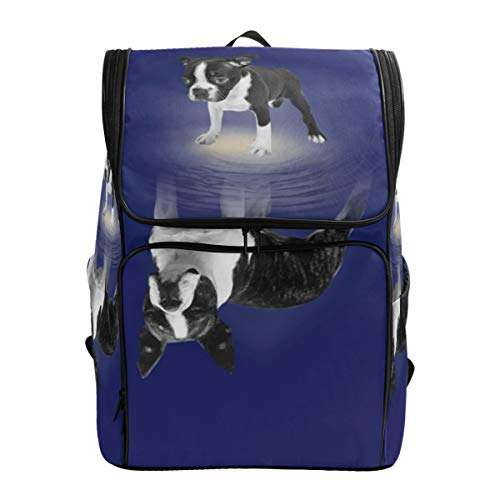 Balin Laptop Backpack with Funny Boston Terrier Lover Print, Travel Business Large Computer Backpack College School Daypack (Best Boston Tourist Activities)