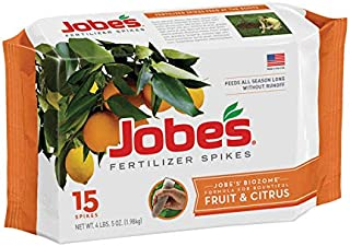product image for Jobes 01612 Spikes-Fruit