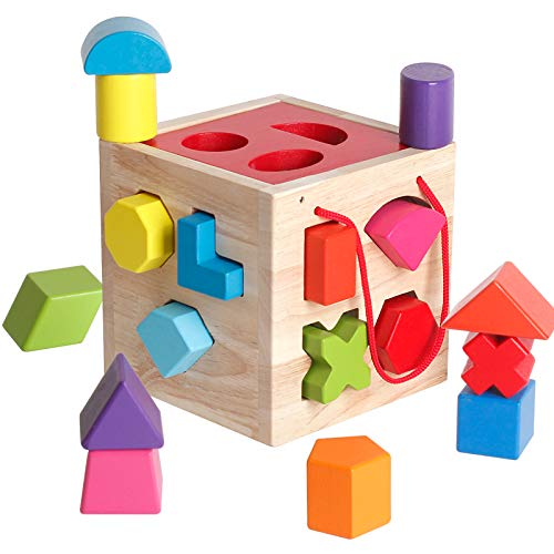 BESTAMTOY Shape Sorter Toy My First Wooden 12 Building Blocks Geometry Learning Matching Sorting Gifts Didactic Classic Toys for Toddlers Baby Kids 2 3 Years Old Fourteen Hole Toy