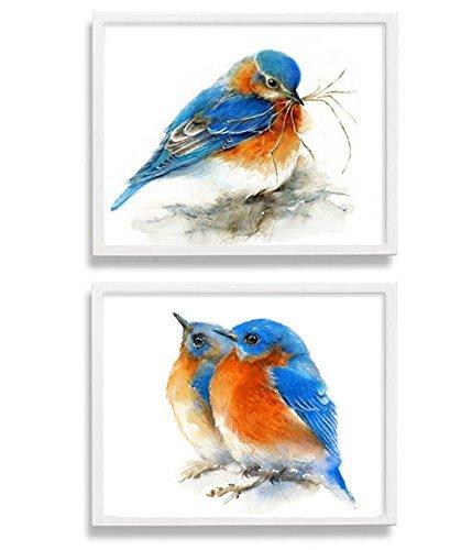 Wall Bluebird (Eastern Bluebirds Set of 2 Art Prints)