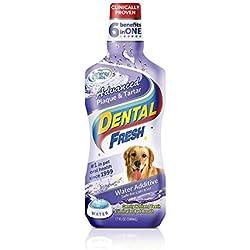 SynergyLabs Dental Fresh Advanced Plaque and Tartar-17 Oz