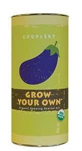 Grow Your Own Eggplant