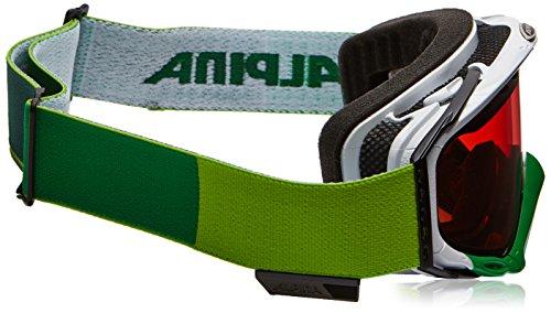 Alpina A7053-021 Turbo GT Lunettes de ski - White-Green