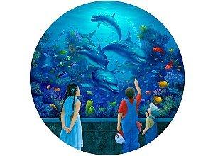 Dolphin Encounter Jigsaw Puzzle 500pc