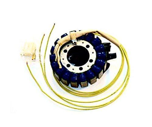 (Ricks Motorsport Electric Stator 21-413)