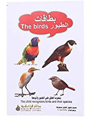 Educational Cards with Bird Pictures for Kids