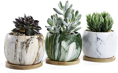 SUN-E 3.54 Inch Round Marbling Ceramic Succulent Pots Cactus Planter Flower Pot Container with Bamboo Tray Drainage Idea 3 in Set